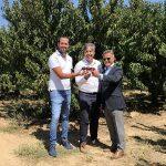 Los 4 perfiles de los productores gourmet españoles MadeinSpain.store